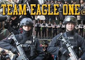 team eagle one
