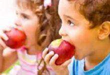 makan apel