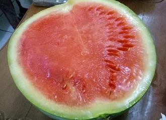 semangka berformalin
